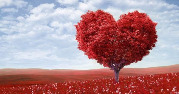 Amore e Dipendenza
